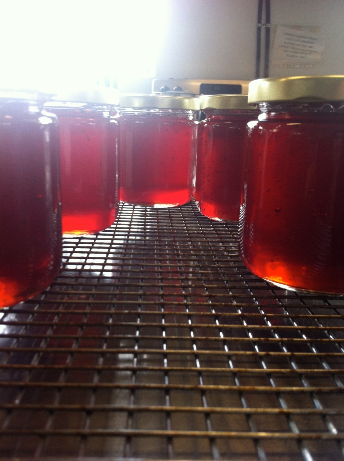 Spiced apple & cranberry jelly